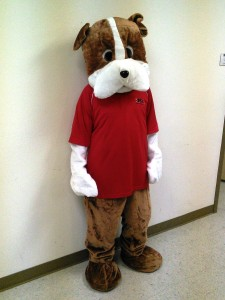 Meet Marky, Mascot in Brown & White Dog Costume